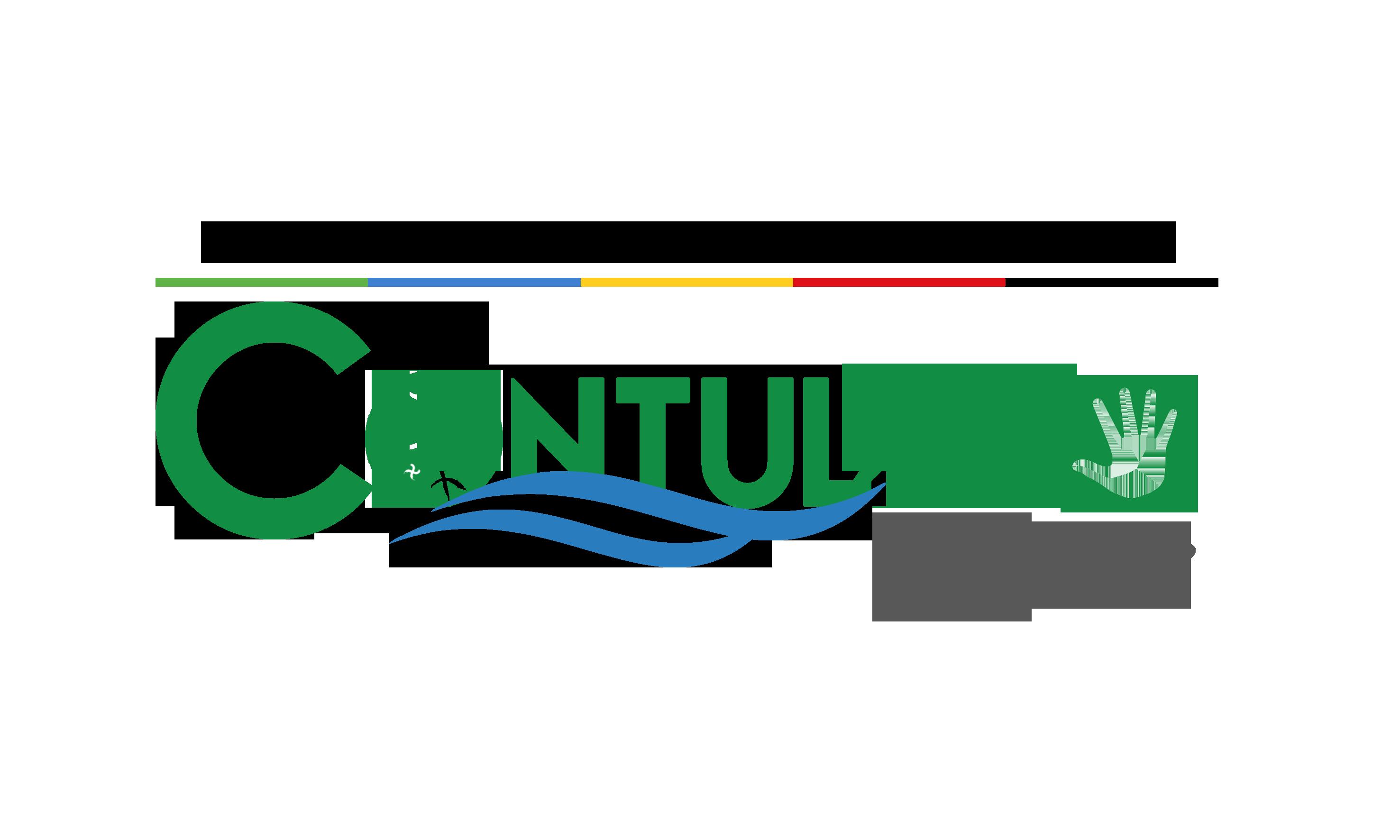 Logo de Municipalidad de Contulmo